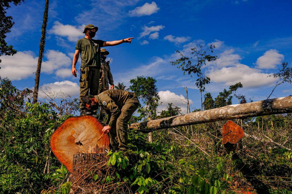 Operação Amazônia Arco Norte na região de Aripuanã Fotos: Mayke Toscano/Secom-MT